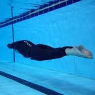 apnea dynamic no finns apnea academy west europe