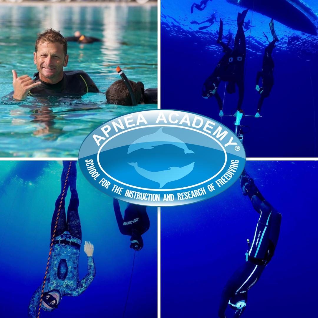 apnea academy west europe didactica - disfruta del mar
