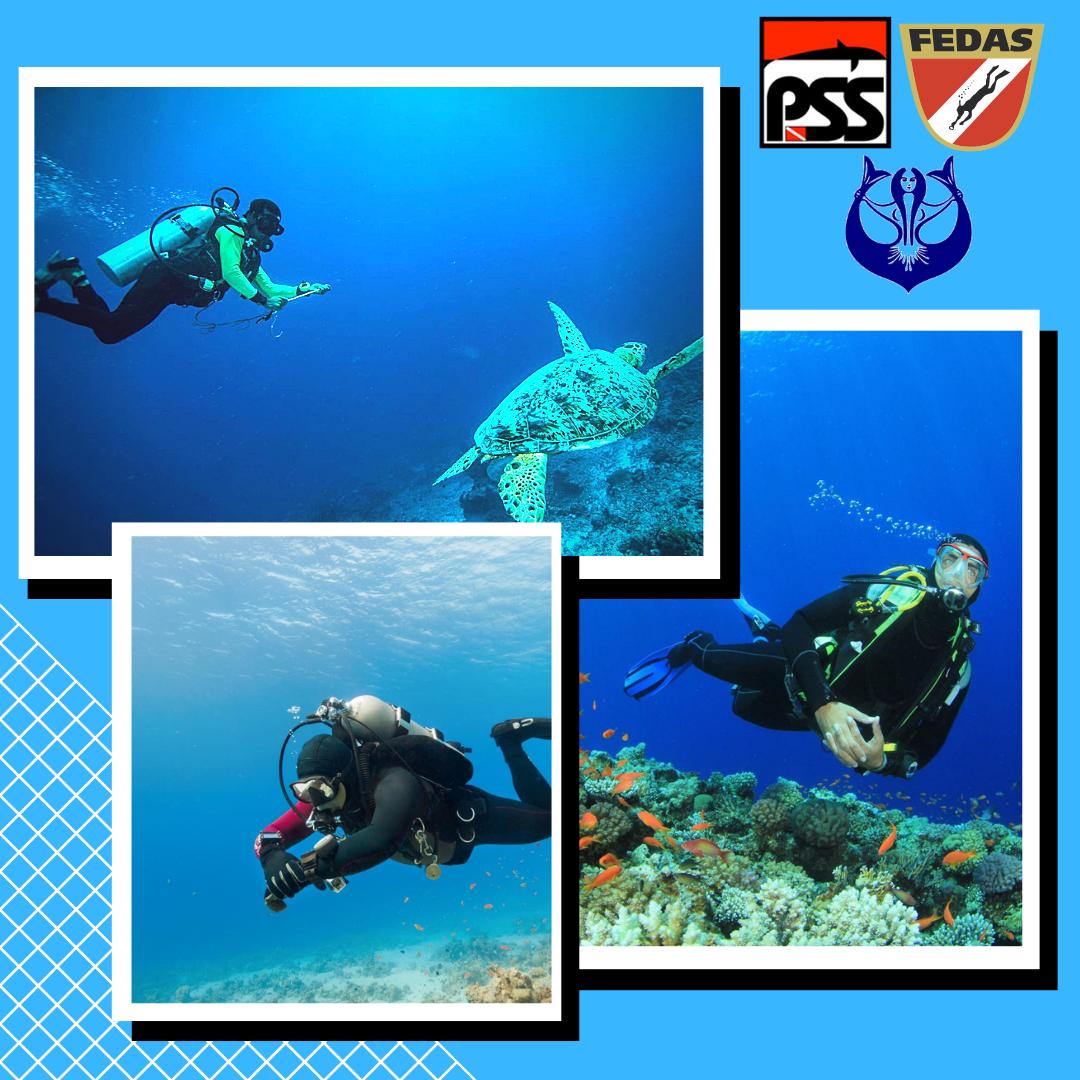 buceo-scuba diving-enjoy the sea- disfruta del mar